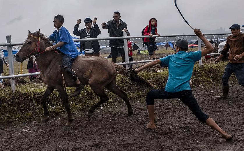 atı cezalandırmak için kamçı ile vurmayın