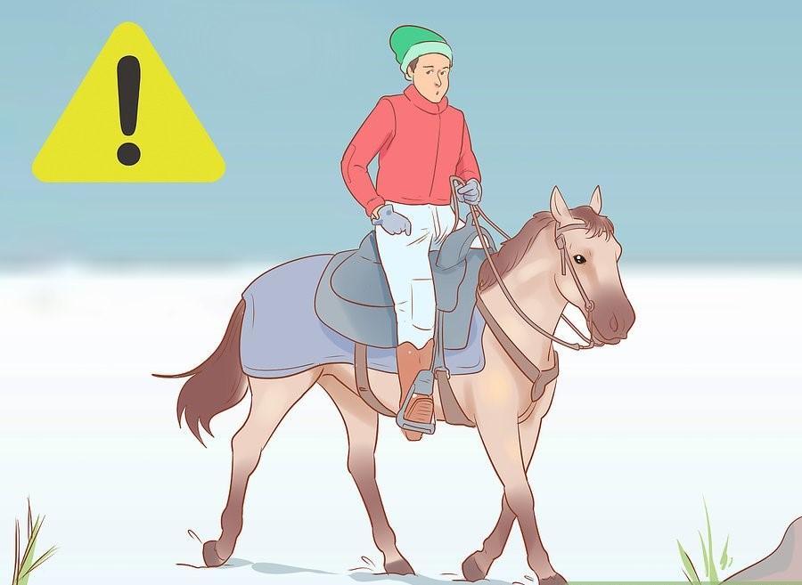 19 Adımda Karlı ve Soğuk Havalarda At Binişi ve Bakımı 13