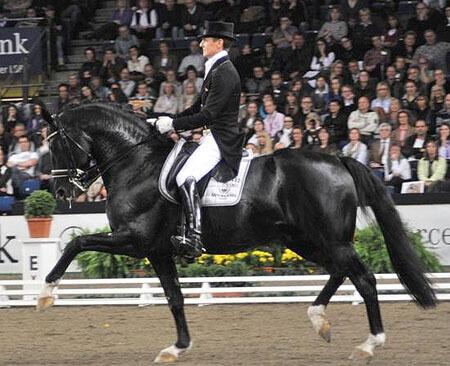 Gelmiş Geçmiş En İyi 10 Dresaj Atı ile Binicisi 9