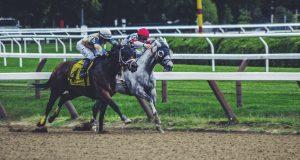 Gazi Koşusu 2020 - Gazi Koşusu Kazanan Atlar 1