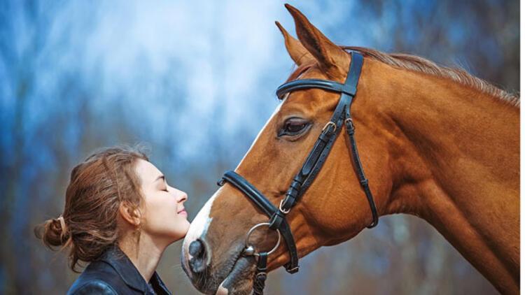 atlara rahatsızlık veren yiyecekler