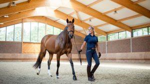 Atlarda Yaşanan Göz Rahatsızlıkları Nelerdir? 2