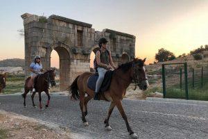 Ülkemizde Yılkı Atları Nerede Yaşar? 3