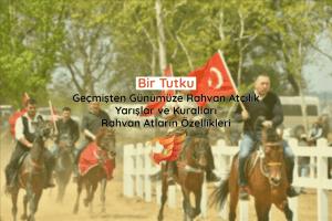 Rahvan Atçılık ve Yarışlar - Rahvan Atların Özellikleri 4