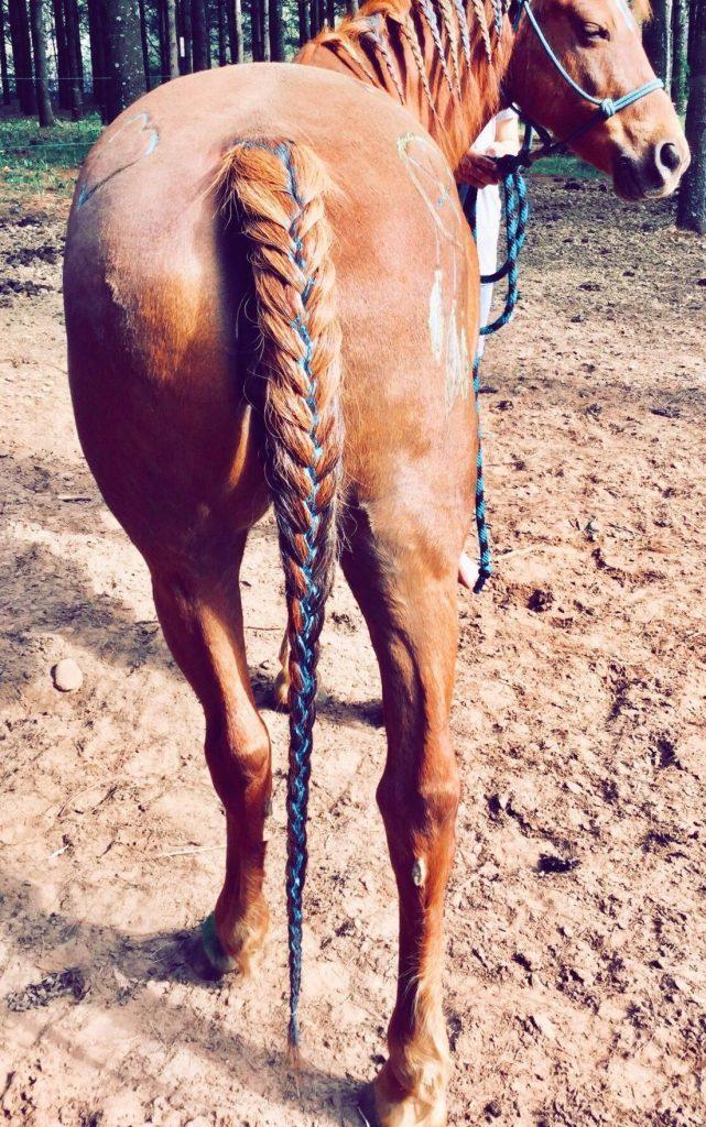 at kuyruğu örme